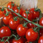 قیمت گوجه فرنگی قرمز